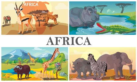 African safari animals