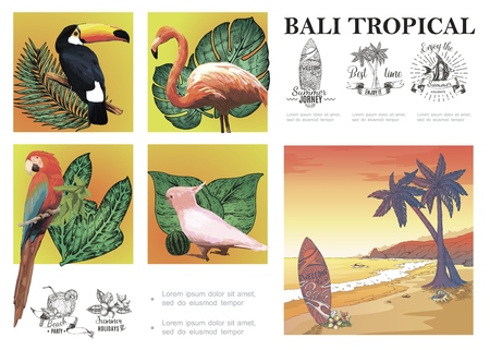 Sketch Bali exotic composition with macaw cockatoo flamingo toucan tropical plants sand beach landscape and summer vacation emblems vector illustration