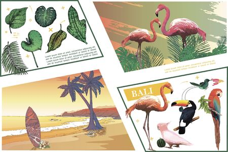 Sketch Bali colorful composition with exotic birds banana monstera frangipani palm leaves and tropical beach landscape vector illustration