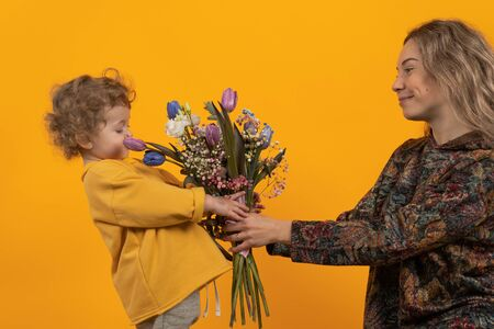 Cute little boy with curly hair holds in his hands a bouquet with multi-colored tulips and gives them to his mother, yellow background, the concept of a holiday and gifts
