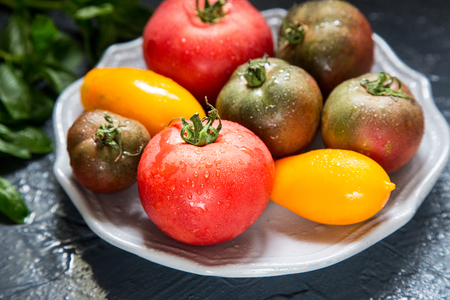 hotbed: Colorful tomatoes of different sizes and kinds with basil. selective focus