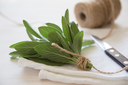 A bunch of fresh sage on light wooden table. Selective focus. Stock Photo