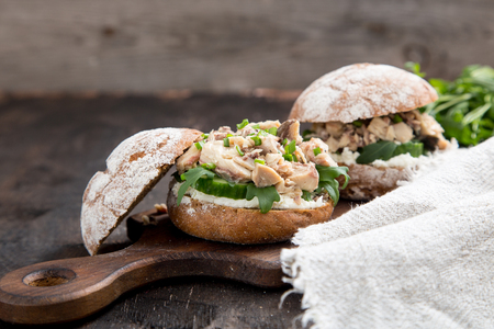 Food burger with tuna, herbs, cucumbers, cottage cheese, onions. Stock Photo