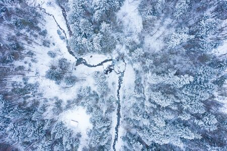 Winter forest with frosty trees and a little meandering stream, aerial view Foto de archivo - 135424859