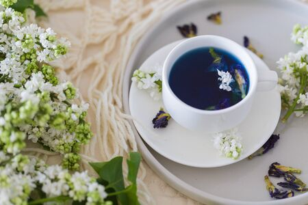 Cup of Butterfly pea tea (pea flowers, blue pea) for healthy drinking, detox drinking and white lilac. Relax time, pay yourself first