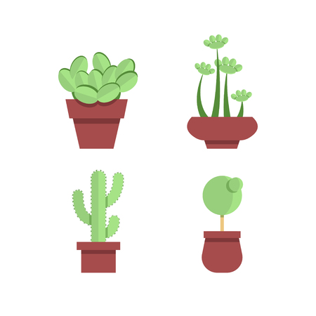 Cacti and plants. Office plants in pots. Indoor flowers. Plants and cacti in the flat style.