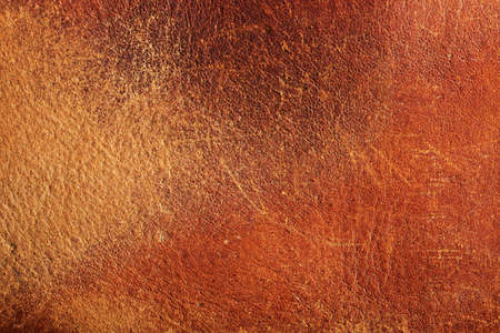 brown leather: Retro background from crumpled brown leather