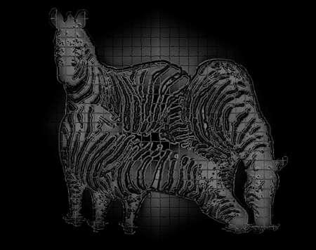 caballo bebe: Zebra - fondo abstracto