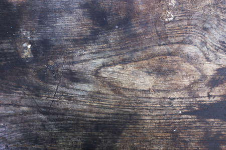 Vintage background: grunge wooden plank