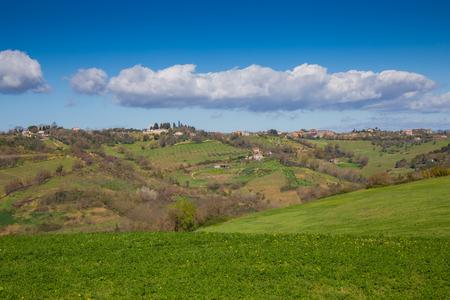 Las colinas de Sabina, en la provincia de Rieti, con campos parcialmente cultivados y en parte olivares.