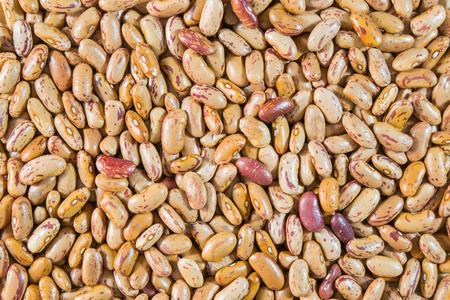 borlotti beans: Borlotti beans seen close up.