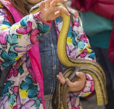 The little girl in the colored jacket is holding the snake.