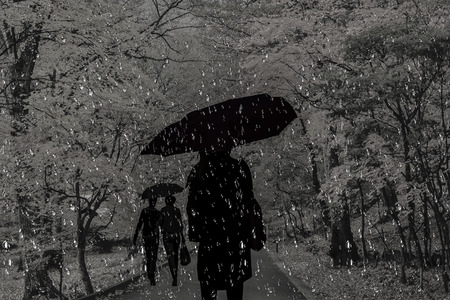 scowl: People walk in the pouring rain on the road in the park Stock Photo