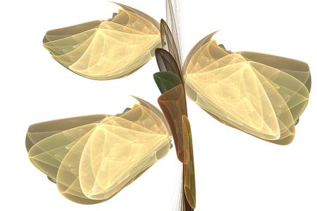 """estereotipo: Orquídea """"Cypripedium"""" hecho de fractales sobre un fondo blanco Foto de archivo"""