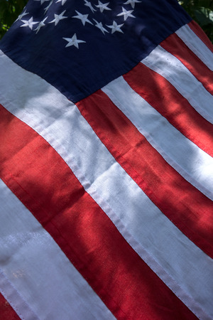 American flag on a background of green grass and leaves. U.S. flag. United States of America flag vertical background.