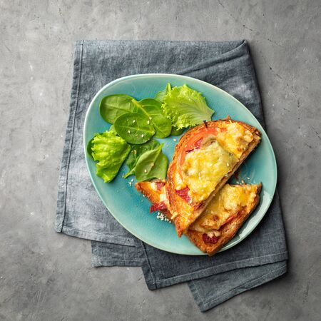 Sandwiches cooked in the oven with tomato, cheese and herbs on a plate. View from above. 版權商用圖片