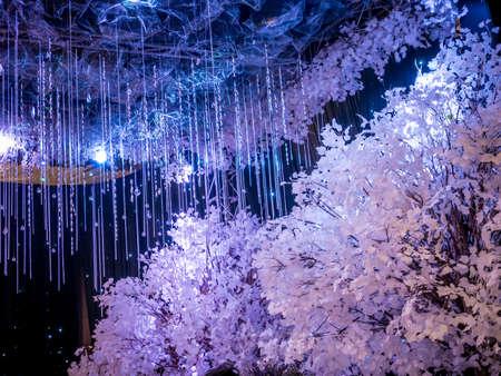 Decoración de la boda blanca del invierno en salón de baile Negro Foto de archivo