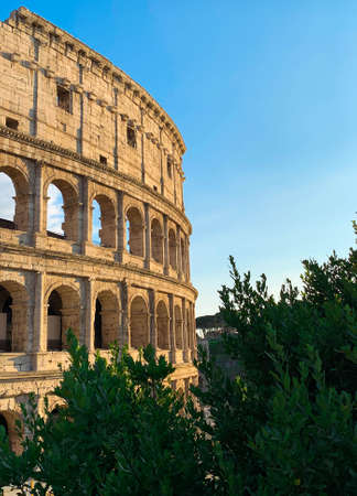 Beautiful view of the Colosseum at sunset with green plants and blue sky, Rome, Italy