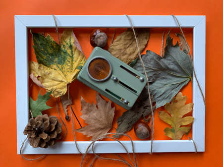Autumn still life top view of white frame with vintage flashlight on autumn leafs, pine cone and chestnuts Imagens