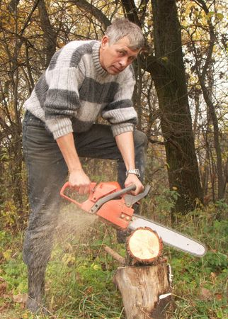 woodcutter:  wood-cutter saw wood  red chainsaw
