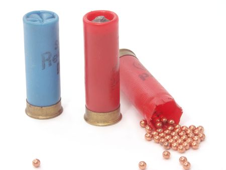 cartridge: hunting ammunition and shot