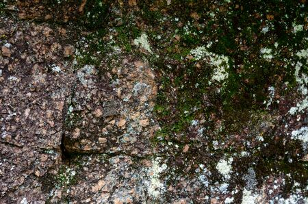Moss on a rock face. Relief and texture of stone with patterns and moss. Stone natural background. Stone with Moss.