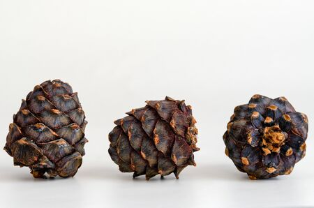 Isolated three pine cone on white background different angles