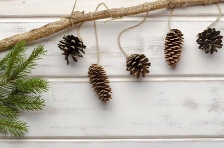Holiday natural decoration christmas decor white