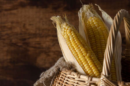 Fresh corn on cobs on rustic wooden table or background 스톡 콘텐츠