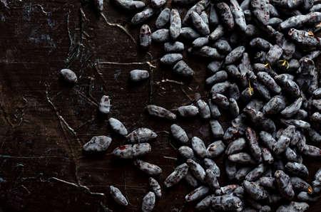 blue honeysuckle berries on a dark textured background,