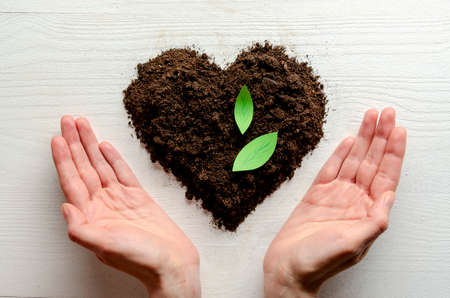 Heart shaped dry soil with woman hands on white wooden background. Earth day concept. 免版税图像