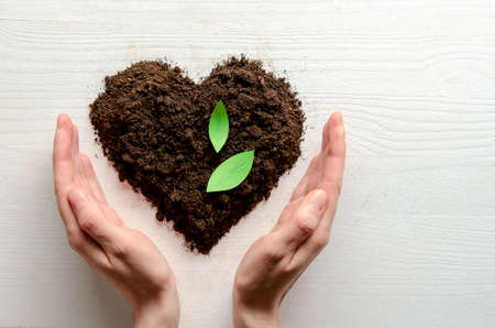 Heart shaped dry soil with woman hands on white wooden background. Earth day