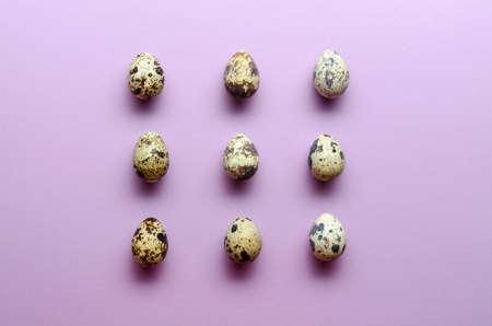 Quail eggs pattern. quail eggs on violet background. Pattern