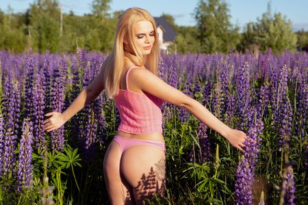A gorgeous blonde girl with a beautiful body in underwear walks through a blooming field lit by bright sunlight, gently touching the flowers with her hands Banque d'images