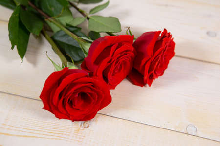 Three red roses on a light wooden background is the best gift for Valentine's day or mother's day. Photo with a copy of the space for your caption on the background Archivio Fotografico