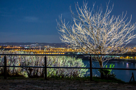 river scape: Night tree Stock Photo
