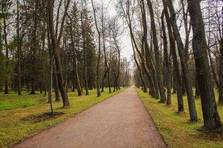 Old Park Oranienbaum