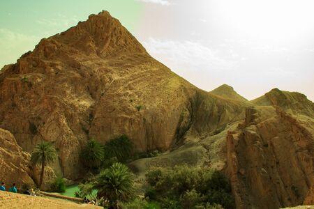 An oasis among the mountains of lifeless