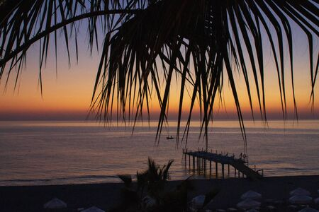 Sea coast in the resort town. Deserted beach with deck chairs. Sunset through the leaves of palm trees.