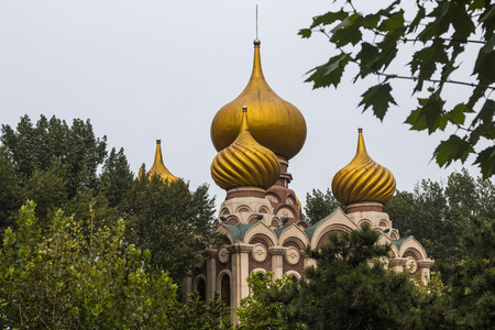 Gold domes of church among green trees