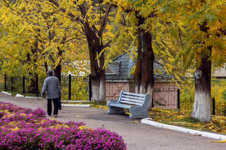 belokurikha: Bench for rest in park of the city of Belokkurikh