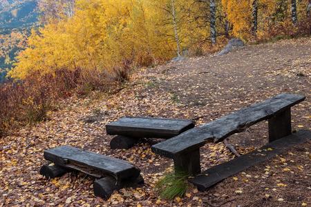 belokurikha: Benches for rest on Tserkovks the mountain in Belokurikha