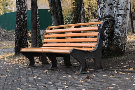 belokurikha: Bench in autumn park of the resort of Belokurikha