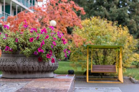 belokurikha: Ceramic vase with autumn flowers in park of the resort Altai of West Stock Photo