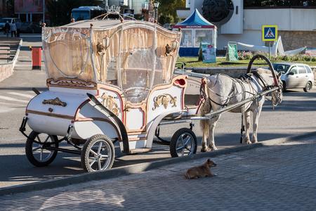 belokurikha: Vehicle waiting for tourists of the city of Belokurikha of Altai Krai Editorial