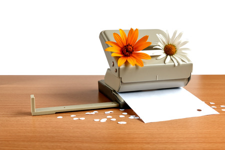 The puncher for paper with camomiles on a table Stock Photo