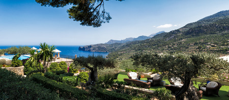 olive groves: Mediterranean resort by the sea, with old olive groves and the sitting area