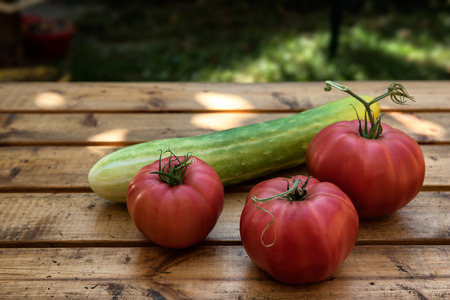 Organic Vegetables from a Small Garden on a Rustic Wooden Table - Tomatoes and Cucumber