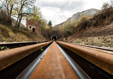 Old abandoned railway tracks in nature leading into the tunnel, traveling by train