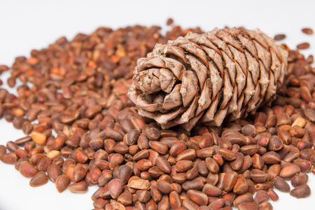 pine cones on a background of cedar seeds Stock Photo